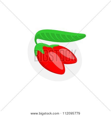 Goji Berry Vector Illustration