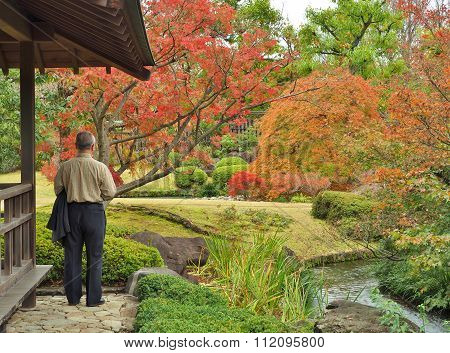 lonely old man looking to the garden in autumn.