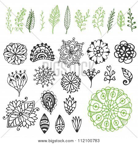 Zentangle Nature Collection. Hand Drawn Vector Illustration With Creative Doodle Flowers Branches