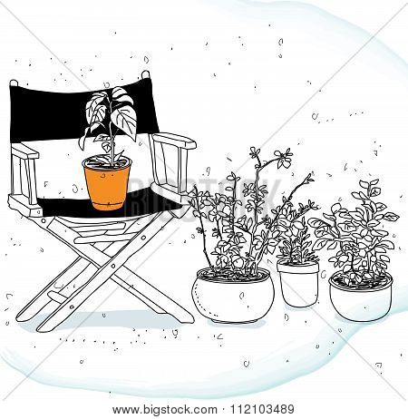 Chairs And Some Potted Plants