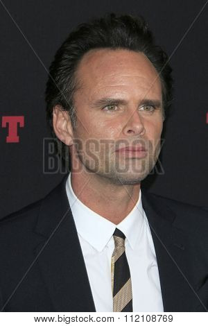 LOS ANGELES - DEC 7:  Walton Goggins at the