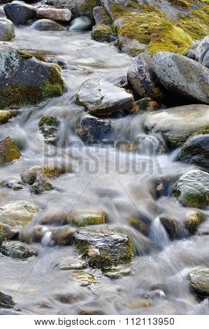 Sub-polar Mountans Creek