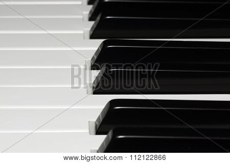 Piano keys - the selected focus