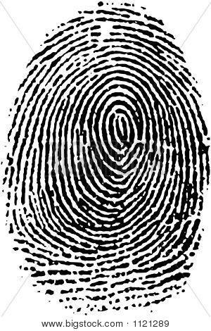 Fingerprint16