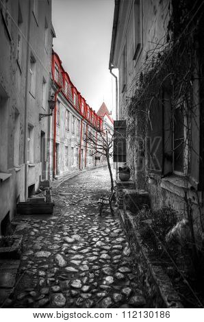 Photos Of Tallinn