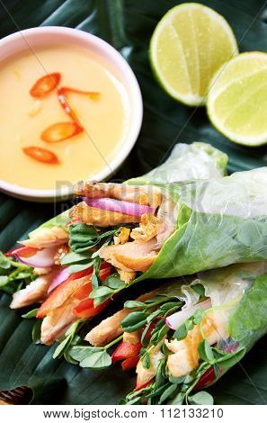 Asian style fresh rice paper spring rolls filled with grilled chicken, vegetables and herbs, a healthy meal