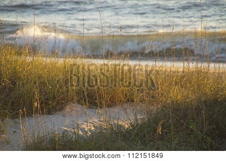 Late Afternoon On A Sandy Path To The Sea
