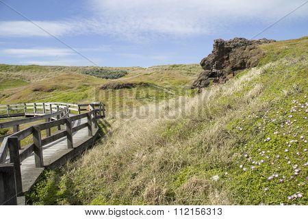 Wooden Pathway Through Hills