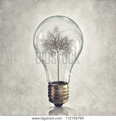 Dry tree in glass light bulb as symbol of energy saving