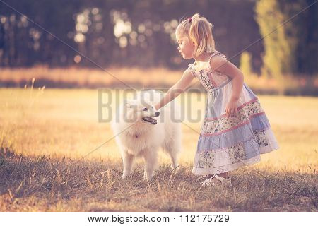 Little girl playing with a dog in a park