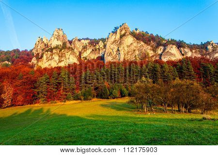Rocks surrounded by Autumn forrest