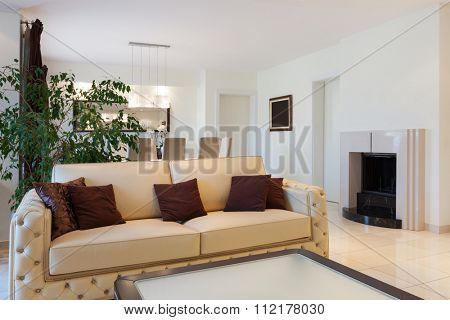 living room of a modern apartment, leather divan