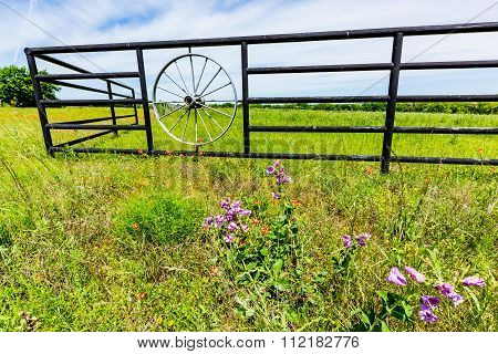 Wagon Wheel Fence And Texas Wildflowers