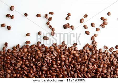 Coffee Bean.