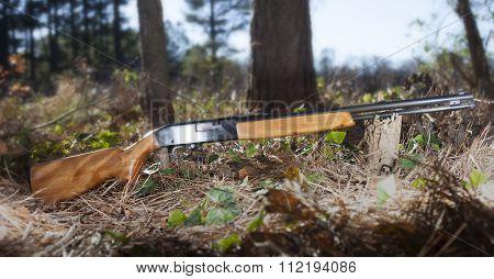 Glamorous Rifle