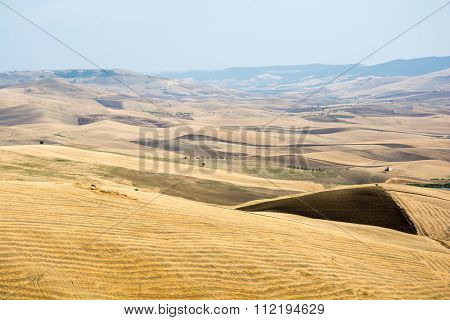 Fields in Basilicata, Italy
