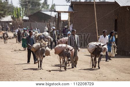 JELDU GOJO, ETHIOPIA-APRIL 22, 2015: Unidentified merchants carry goods to market on the backs of donkeys in the highlands of Ethiopia