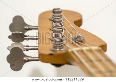 Electric Bass Head