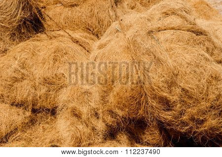 Coir prepared to be woven