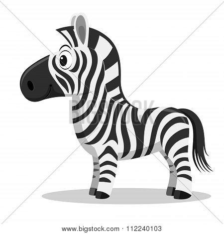Cartoon Zebra, vector