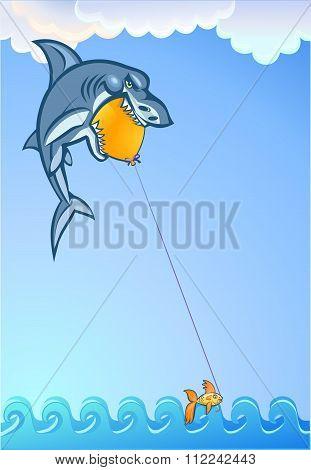 Fishing For Sharks