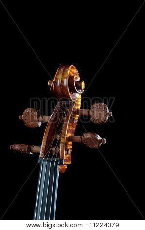 Cello Neck On Black