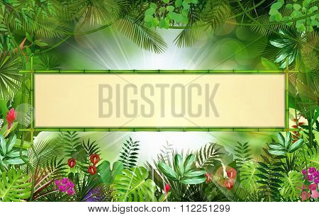 Tropical background with rectangle floral frame in concept bamboo