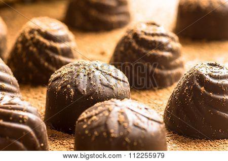 Chocolate Bonbon In Cocoa Powder