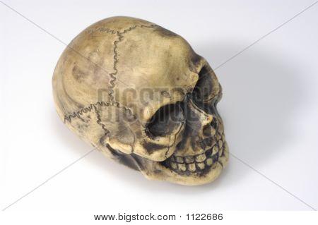 echte aussehende Schädel over white Background totenkopf