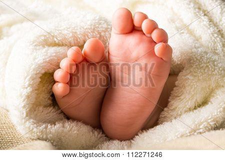 Newborn.