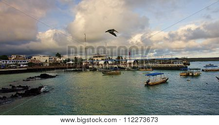 Puerto Ayora, Ecuador - November 23, 2015: View Of The Port On 2
