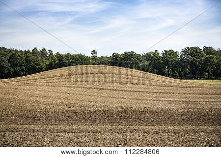 Landscape With Arable Land, Hill And Forest
