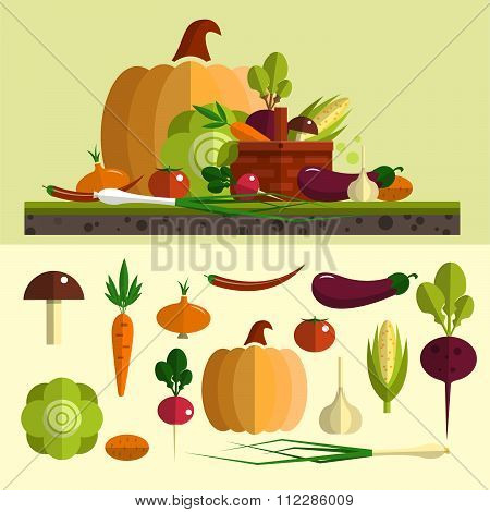 Vegetables icons vector set in flat style. Isolated design elements. Healthy food and organic farm b