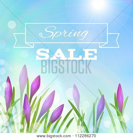 Spring Background With Violet Flowers.