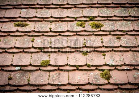 Close Up Of An Old Tieled Roof Overgrown With Moss