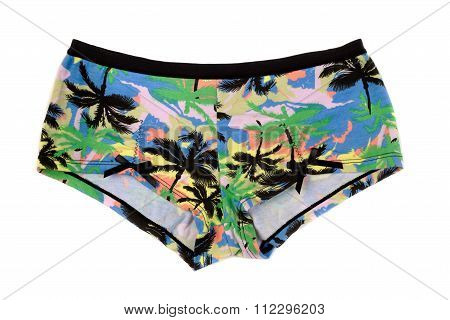 Pants With Pattern Of Palm Trees.