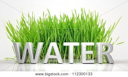 Green grass with Water 3D text, isolated on white background.