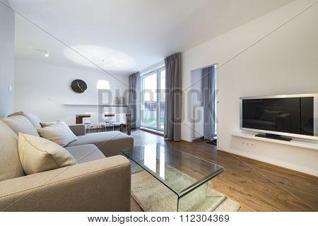 Modern, Elegant Living Room