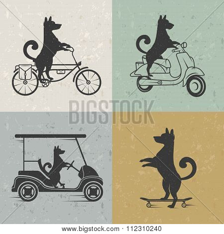 Vector Set Sign Dog
