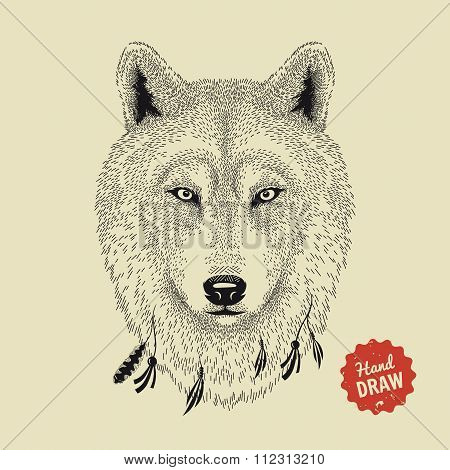 Vector Sketch Of A Wolf Face. Wolf Head, Front View. Hand Drawn Illustration
