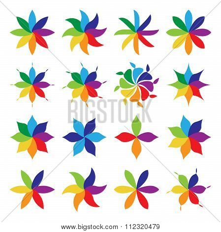 Set Of Multicolor Flowers