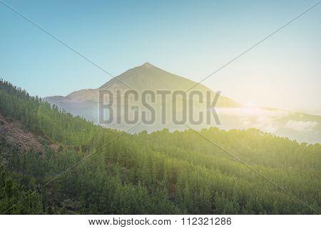 Scenic Landscape - Mountain, Sun And Forest Valley - Pico De Teide
