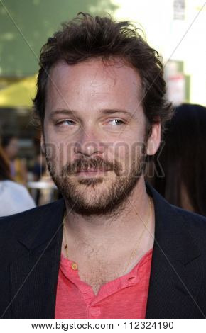 Peter Sarsgaard at the Los Angeles Premiere of