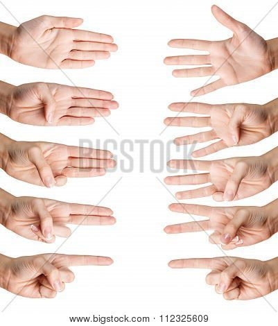 Woman hand shows with fingers from one to five