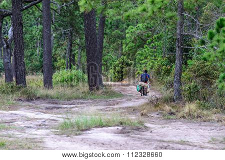 Cycling Delivery Service At Travel Place On Mountain Top Of National Park.