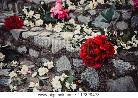 White and red flowers on the stone steps