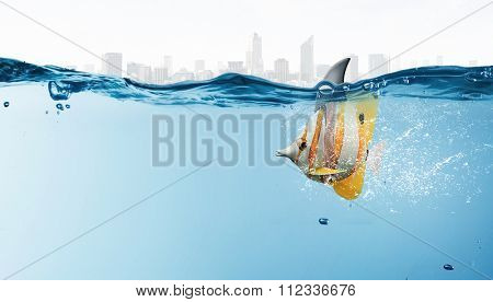 Exotic fish in water wearing shark fin to scare predators