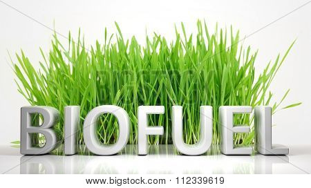 Green grass with Biofuel 3D text, isolated on white background.