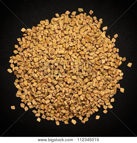 Top view of Organic Fenugreek.