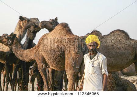 Pushkar, India - November 23: An Unidentified Camel Trader In The Pushkar Fair On November 23, 2015